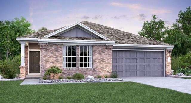 11817 Roscommon Trl, Austin, TX 78754 (#9874465) :: Ana Luxury Homes
