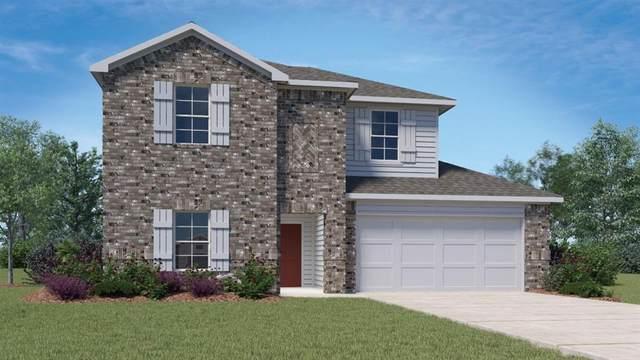 913 Nodding Nixie, Seguin, TX 78155 (#9880840) :: Papasan Real Estate Team @ Keller Williams Realty