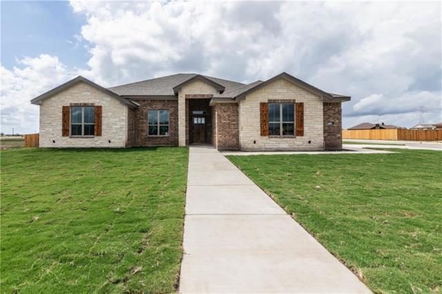 4017 Big Brooke, Salado, TX 76571 (#9891193) :: The Heyl Group at Keller Williams