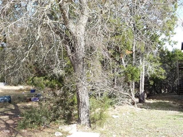 48 B Deer Ridge Rd, Wimberley, TX 78676 (#9893138) :: Watters International