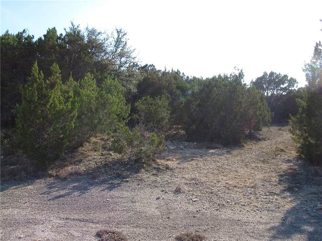 0 Dawn Dr, Lago Vista, TX 78645 (MLS #9895463) :: Vista Real Estate