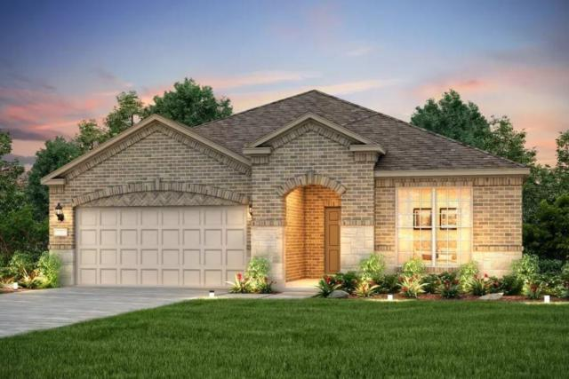 211 Hanging Star Ln, Georgetown, TX 78633 (#9901173) :: Realty Executives - Town & Country