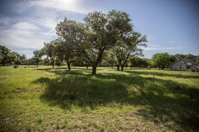 000 Winding Oak Dr, Johnson City, TX 78636 (#9922742) :: The Perry Henderson Group at Berkshire Hathaway Texas Realty
