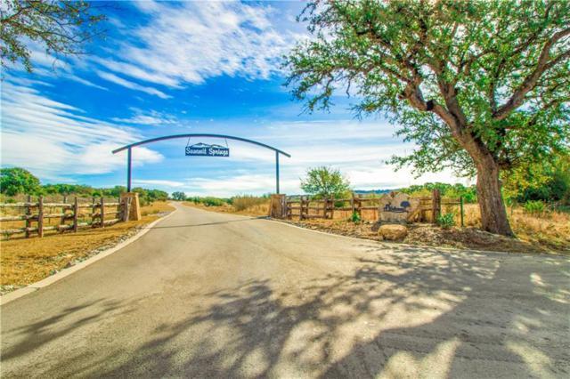 427 Cedar Mountain Dr, Spicewood, TX 78669 (#9925376) :: Realty Executives - Town & Country