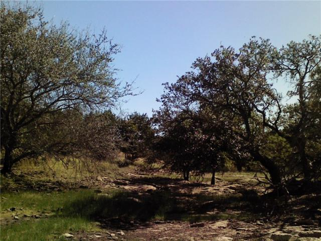 Lot 19 Park View Dr, Marble Falls, TX 78654 (#9948863) :: Forte Properties