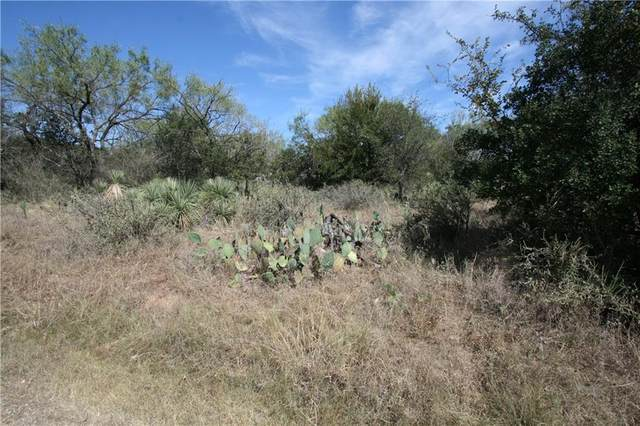 Lot 223 & 224 Northcrest Dr, Granite Shoals, TX 78654 (#9960463) :: The Summers Group