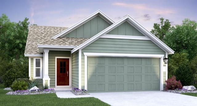 172 Red Buckeye Loop, Liberty Hill, TX 78642 (#9978607) :: Zina & Co. Real Estate