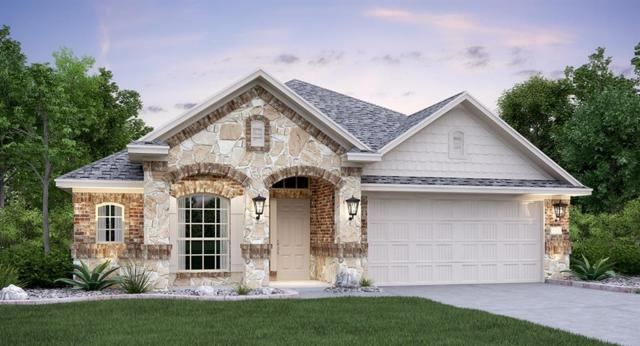 1258 Chad Dr, Round Rock, TX 78665 (#9984963) :: Douglas Residential
