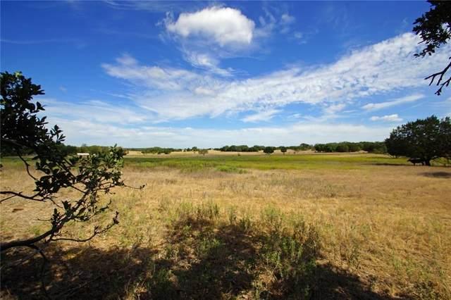 199 Apache Springs Rd, Briggs, TX 78608 (#9996123) :: Watters International