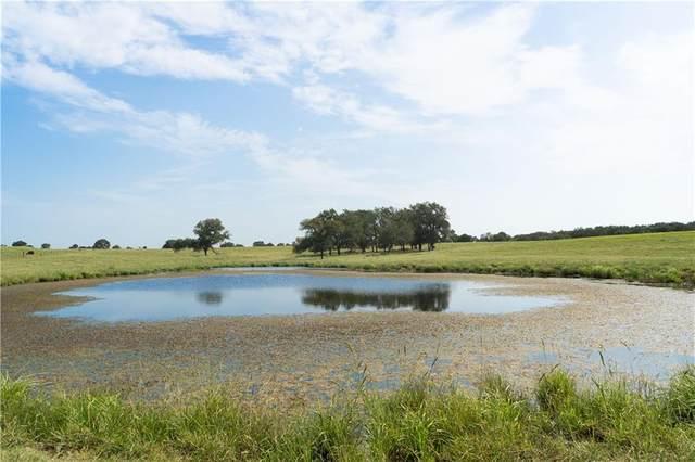 TBD 50 Acres Fm 2268, Holland, TX 76534 (#1096620) :: Papasan Real Estate Team @ Keller Williams Realty