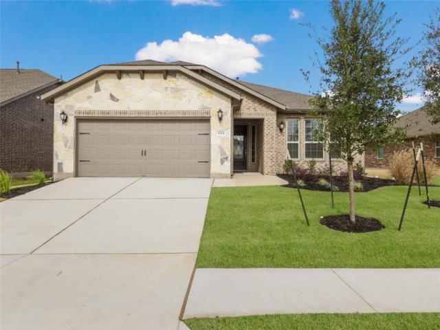 3224 Aurelia Ln, Round Rock, TX 78665 (#1109214) :: Watters International