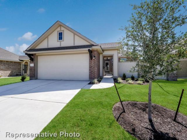 2109 Pindos Pony Way, Georgetown, TX 78626 (#1218299) :: Watters International