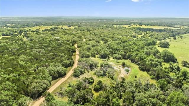 2005 County Road 282, Liberty Hill, TX 78642 (#1337290) :: Papasan Real Estate Team @ Keller Williams Realty