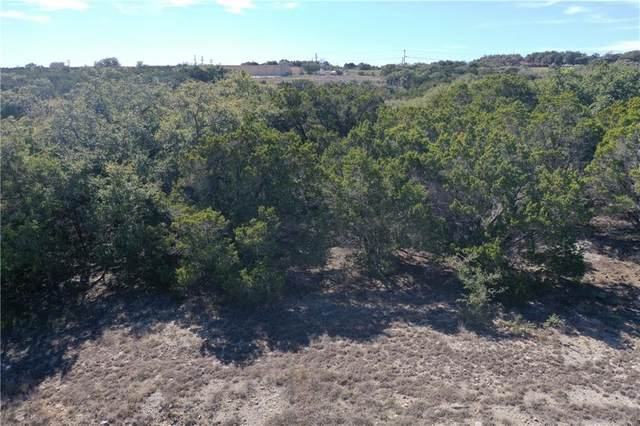 513 Cielo Vis, Canyon Lake, TX 78133 (#1357490) :: First Texas Brokerage Company