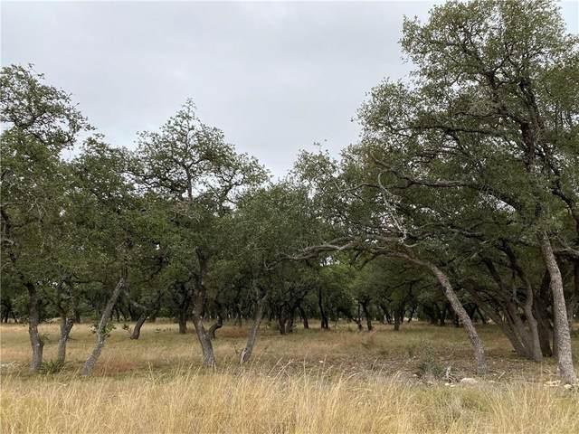 169 Oryx Ln, Lampasas, TX 76550 (#1395686) :: First Texas Brokerage Company