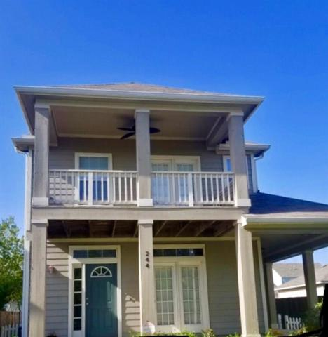 244 Newberry Trl, San Marcos, TX 78666 (#1408008) :: 12 Points Group