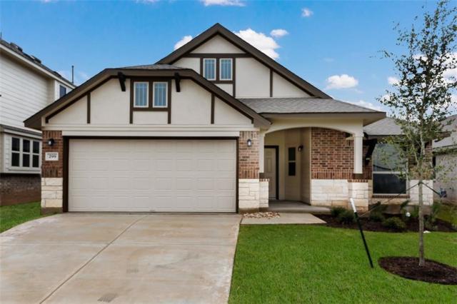 299 Rimrock Ct, Bastrop, TX 78602 (#1563425) :: Papasan Real Estate Team @ Keller Williams Realty