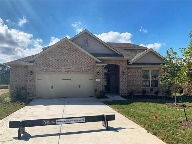 541 Scenic Bluff Dr, Georgetown, TX 78628 (#1565039) :: Ana Luxury Homes