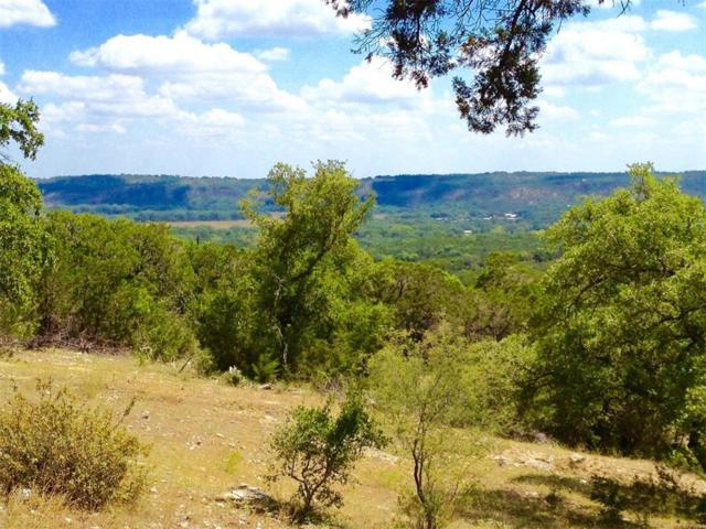 156.856 acres of Vista Verde Path, Wimberley, TX 78676 (#1569701) :: The ZinaSells Group