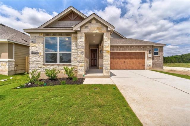 341 Jarbridge Dr, Kyle, TX 78640 (#1579781) :: The Heyl Group at Keller Williams