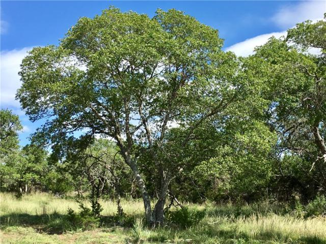 2058 Lipan Apache Run, Blanco, TX 78606 (#1581406) :: Papasan Real Estate Team @ Keller Williams Realty
