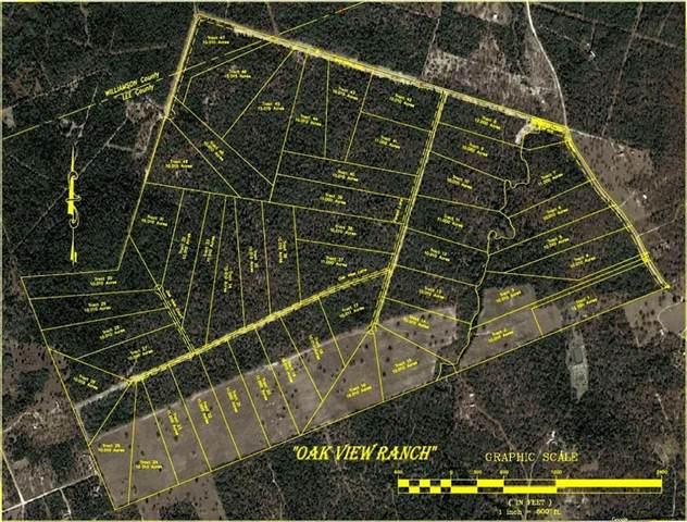 Lot 41 Oak View Ranch, Thrall, TX 76578 (#1617250) :: R3 Marketing Group