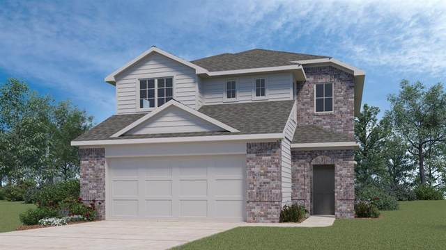 109 Frederick Dr, Georgetown, TX 78626 (#1648755) :: RE/MAX Capital City