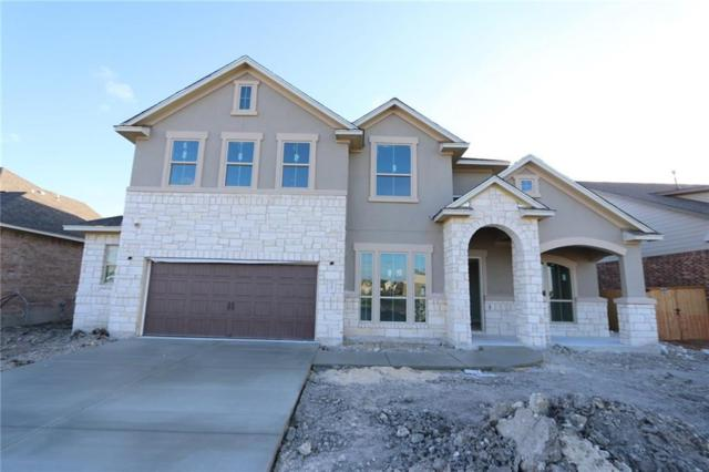 3391 Vasquez Pl, Round Rock, TX 78665 (#1728790) :: The Perry Henderson Group at Berkshire Hathaway Texas Realty