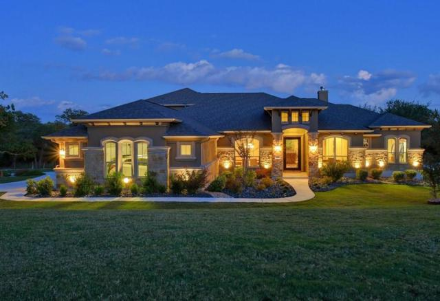 313 Chicoma Cv, Liberty Hill, TX 78642 (#1738748) :: The Gregory Group