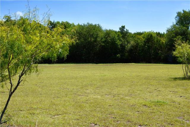 1451 Chisholm Trl, Salado, TX 76571 (#1759157) :: Papasan Real Estate Team @ Keller Williams Realty