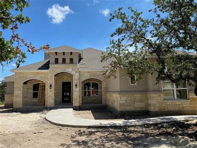 317 Houston Loop, Liberty Hill, TX 78642 (#1785107) :: Papasan Real Estate Team @ Keller Williams Realty