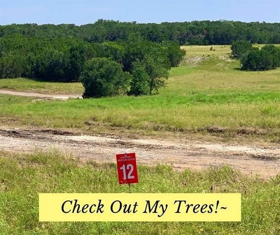 12 Delorean Cir, Burnet, TX 78611 (#1838402) :: The Perry Henderson Group at Berkshire Hathaway Texas Realty