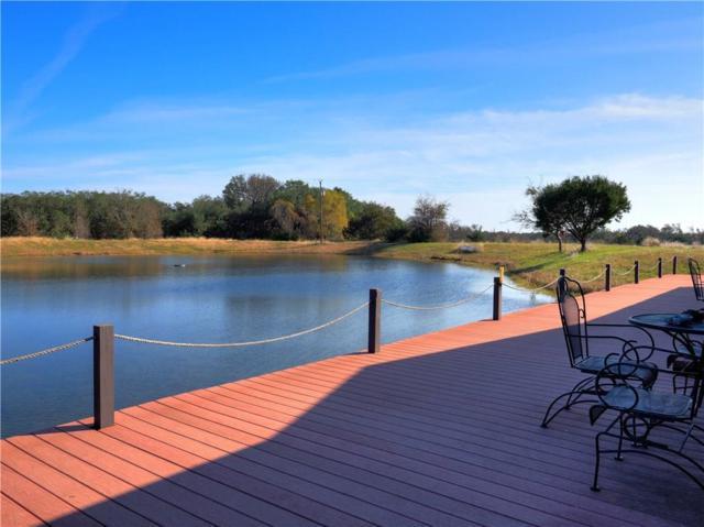12373 County Road East 243, Burnet, TX 78611 (#1851553) :: Papasan Real Estate Team @ Keller Williams Realty