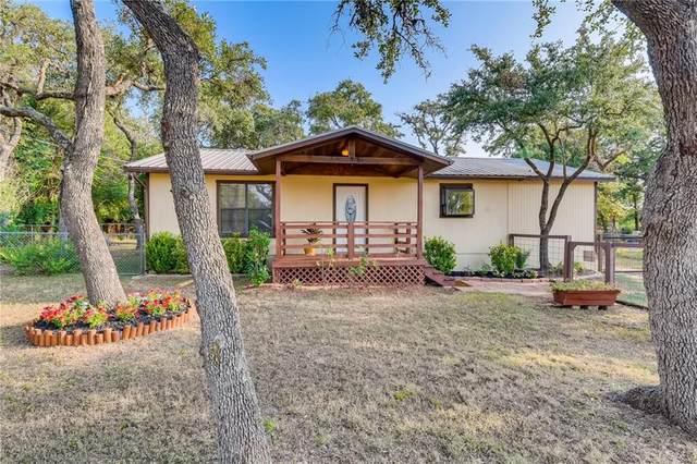 315 Summit Dr, Dripping Springs, TX 78620 (#1853189) :: Ben Kinney Real Estate Team