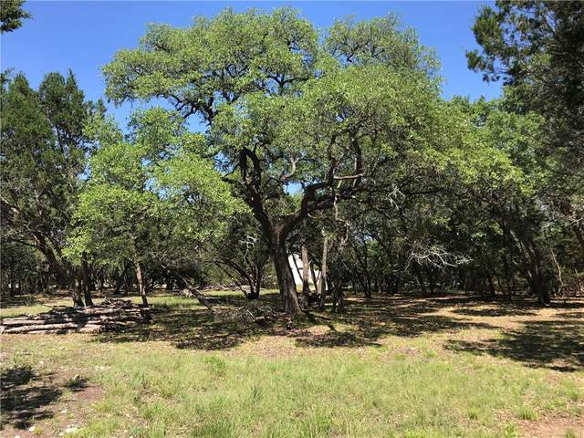 TBA Lot 76 Cielo Springs Dr, Blanco, TX 78606 (MLS #1861546) :: Brautigan Realty