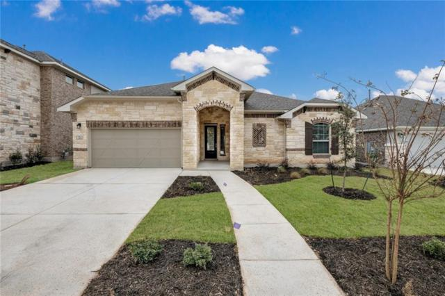 504 Academy Oaks Dr, San Marcos, TX 78666 (#1909357) :: The Heyl Group at Keller Williams