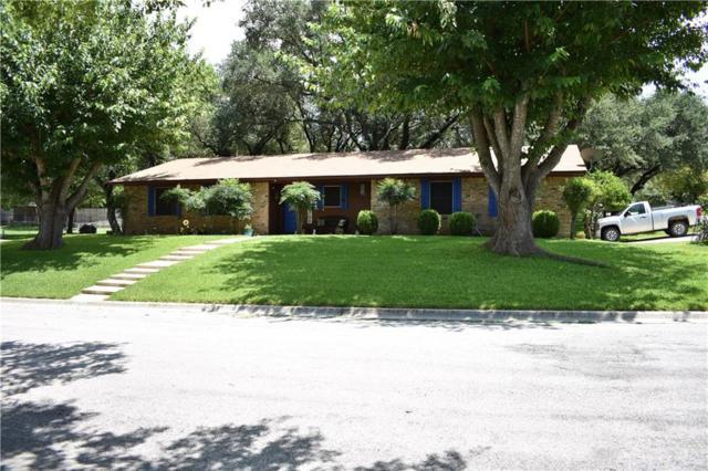 14 Caprice Ln, Lampasas, TX 76550 (#1921337) :: Zina & Co. Real Estate