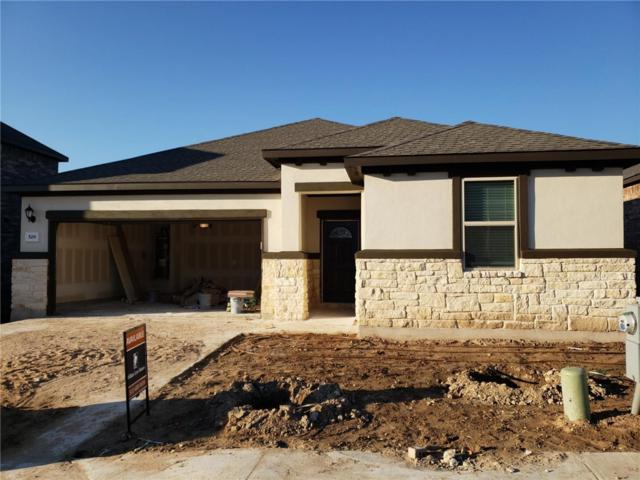 529 Whitney Trail, Leander, TX 78641 (#1986573) :: The Heyl Group at Keller Williams