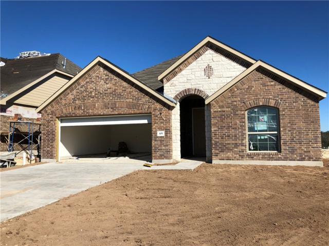 105 Concho Creek Loop, Leander, TX 78641 (#2024513) :: The Heyl Group at Keller Williams