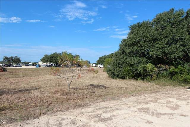 145 Bevers Rd, Liberty Hill, TX 78642 (#2050069) :: First Texas Brokerage Company