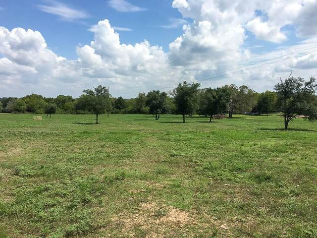 00 Willow, Luling, TX 78648 (#2114283) :: RE/MAX Capital City