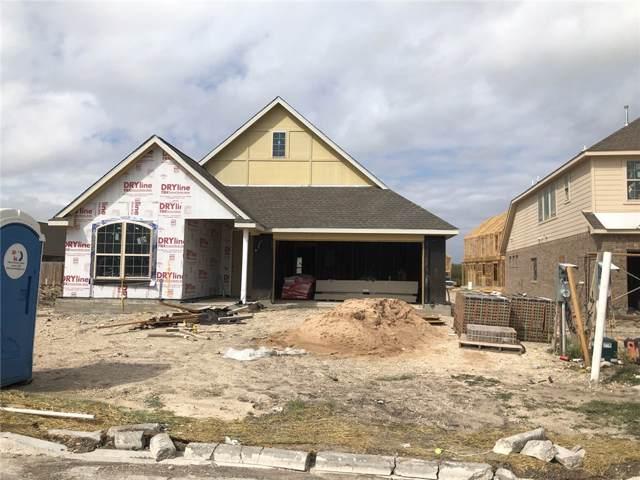 19412 Camlann Pl, Pflugerville, TX 78660 (#2143986) :: Ben Kinney Real Estate Team