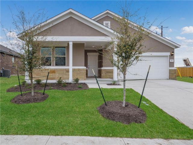 313 Tulum Terrace, Leander, TX 78641 (#2182650) :: Papasan Real Estate Team @ Keller Williams Realty