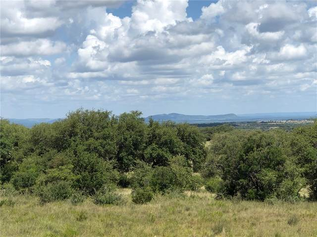 655 Vista Ridge Dr, Round Mountain, TX 78663 (#2285514) :: Lauren McCoy with David Brodsky Properties