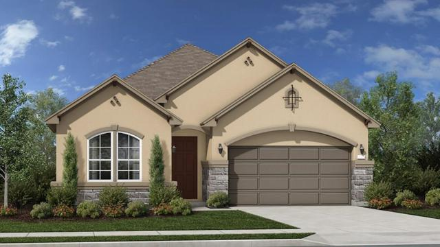 4332 Orange Blossom Pass, Leander, TX 78641 (#2294901) :: Papasan Real Estate Team @ Keller Williams Realty