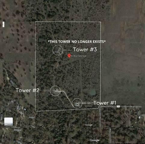 312 Blue Flame Rd, Cedar Creek, TX 78612 (#2299881) :: The Heyl Group at Keller Williams