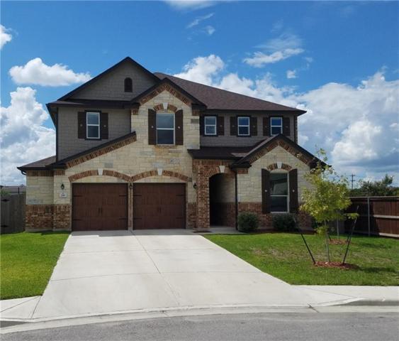 281 Fender Dr, Kyle, TX 78640 (#2360452) :: Ana Luxury Homes