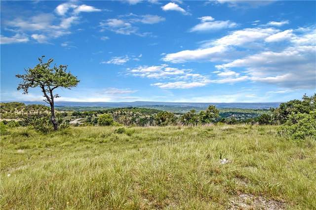 20 acres W Lakeshore Dr, Dripping Springs, TX 78620 (#2383377) :: First Texas Brokerage Company