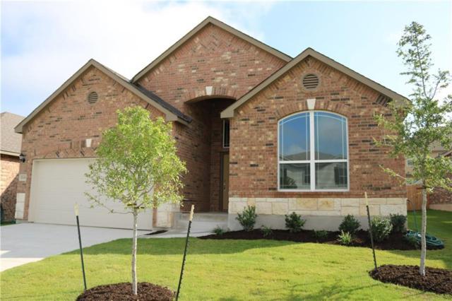 17208 Brittle Ln, Pflugerville, TX 78660 (#2397371) :: Papasan Real Estate Team @ Keller Williams Realty