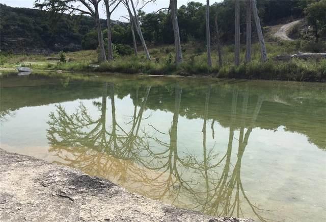 110 Water Park Rd, Wimberley, TX 78676 (#2621840) :: Ben Kinney Real Estate Team